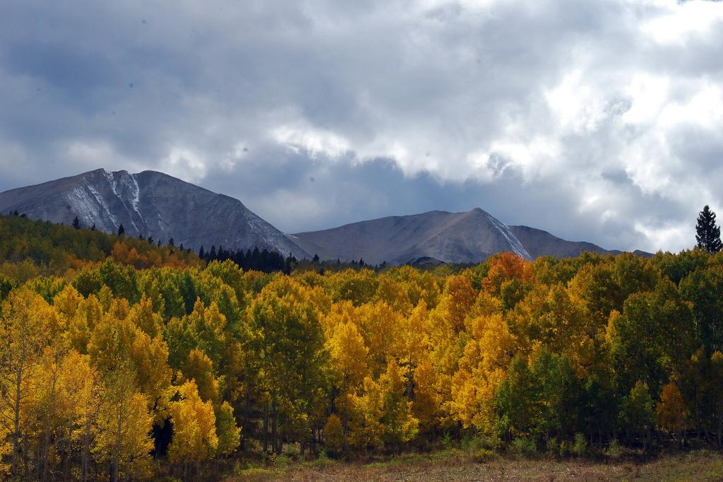 Sopris colors