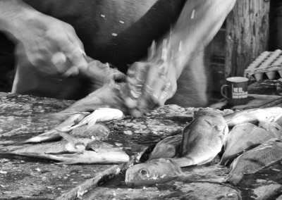 fish scaling bw